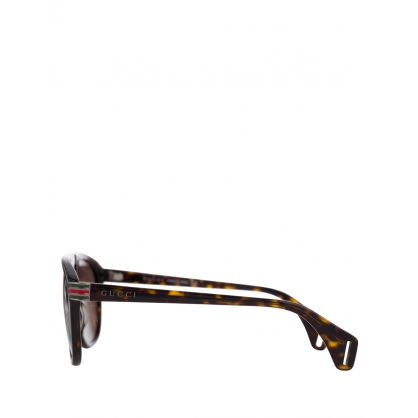 Black/Brown Iconic Sunglasses