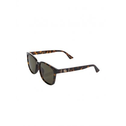 Brown/Black Tortoiseshell Havana Sunglasses