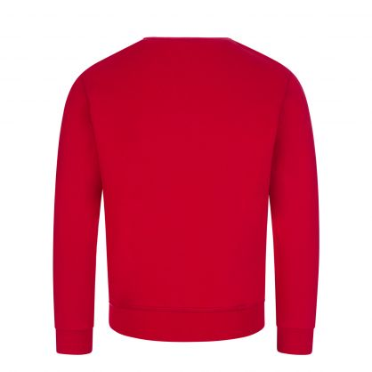 Kids Red ICON Sweatshirt