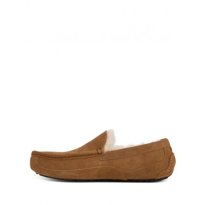 Brown Ascot Slippers