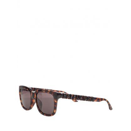 Black/Brown Sunglasses