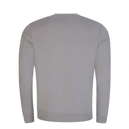 Silver Grey Doby213 Sweatshirt