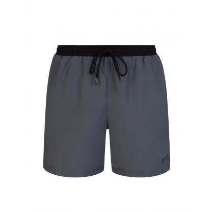 Grey Starfish Swimwear Shorts