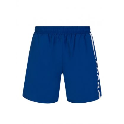 Medium Blue Dolphin Swim Shorts