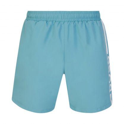 Turquoise Beachwear Dolphin Swim Shorts