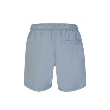 Blue Steel Banks Swim Shorts
