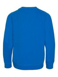 Blue Tiger Sweatshirt