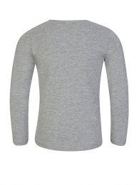 Grey Super Kenzo Tiger Long Sleeve T-Shirt