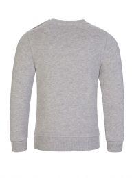 Grey Tiger Sweatshirt