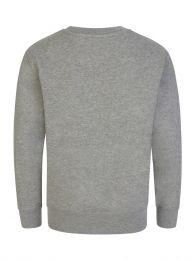 Kids Grey Logo Sweatshirt