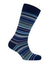 Navy Signature Multi Stripe Socks