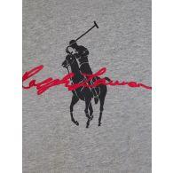 Polo Ralph Lauren Kids Grey Signature Graphic T-Shirt